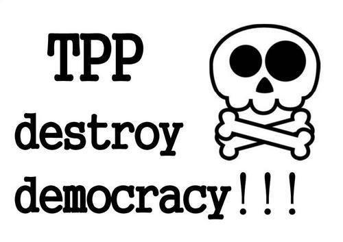 TPP_destroy_page0001.jpg